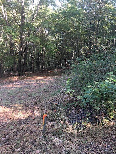 0 Second Mountain Trl, HINTON, VA 22831 (MLS #596586) :: Real Estate III