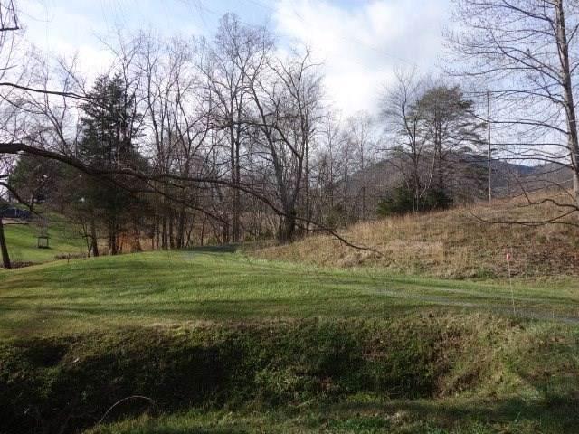 0 Stonegate Ln, Nellysford, VA 22958 (MLS #597464) :: Real Estate III