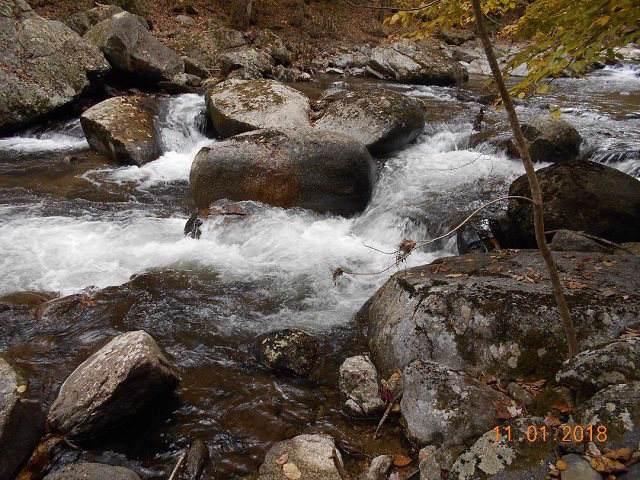 TBD Crabtree Falls Hwy #11, Tyro, VA 22976 (MLS #597803) :: Jamie White Real Estate