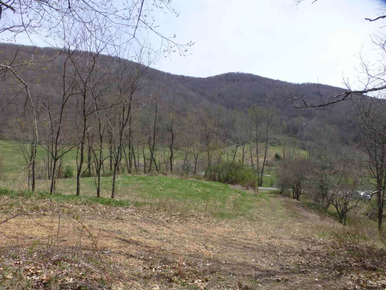 62 Acres Upper Back Creek Rd - Photo 1