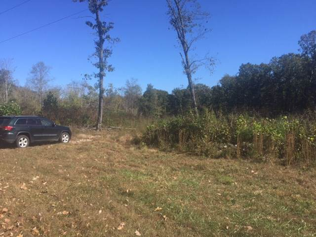 1 Paddock Wood Rd, KESWICK, VA 22947 (MLS #599301) :: Real Estate III