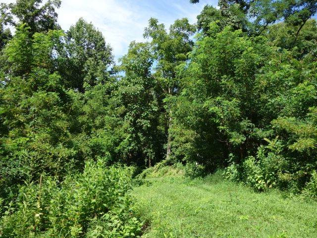 Lot 4 Forks Of Buffalo  Dr, AMHERST, VA 24521 (MLS #600535) :: Real Estate III