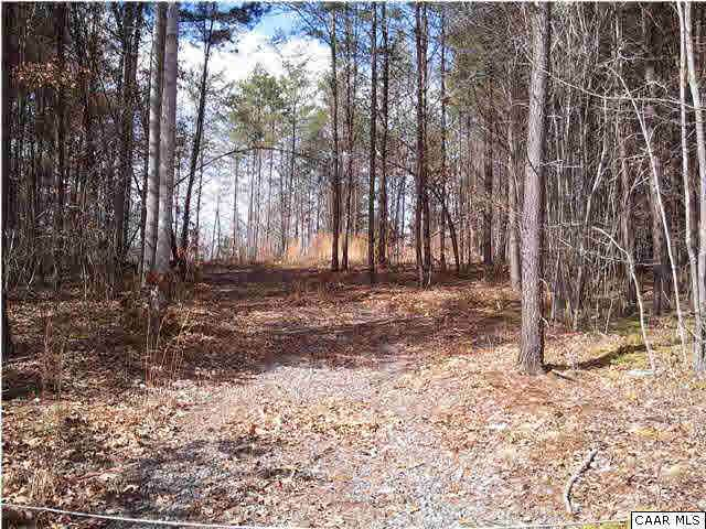 Green Creek Rd #09, SCHUYLER, VA 22969 (MLS #602068) :: Jamie White Real Estate