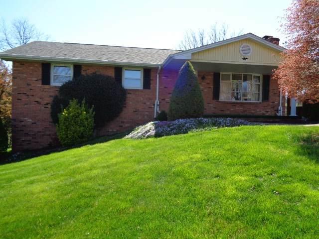 163 Gravels Rd, HARRISONBURG, VA 22802 (MLS #602198) :: Real Estate III