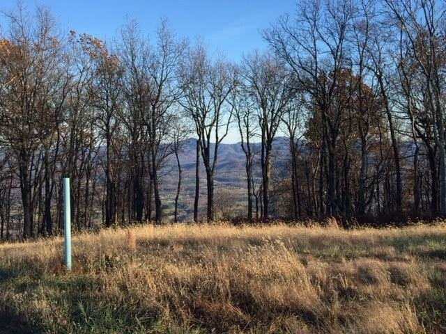 Lot 10 Elk Meadow Dr, AFTON, VA 22920 (MLS #604057) :: Real Estate III
