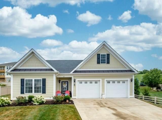 265 Windsor Dr, Fishersville, VA 22939 (MLS #606432) :: KK Homes