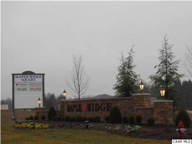 TBD 2A Bobbys Way, Fishersville, VA 22939 (MLS #606964) :: KK Homes