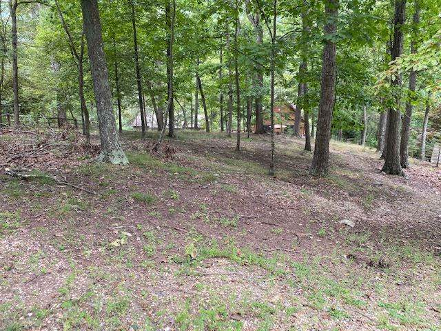 4627 Palmer Rd #148, Mcgaheysville, VA 22840 (MLS #608236) :: Jamie White Real Estate