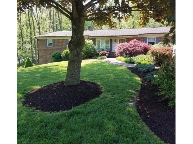 917 W Mosby Rd, HARRISONBURG, VA 22801 (MLS #609913) :: Jamie White Real Estate
