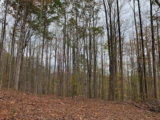 TBD Lot 2 Sweet Hollow Ln, CHARLOTTESVILLE, VA 22903 (MLS #611084) :: Real Estate III