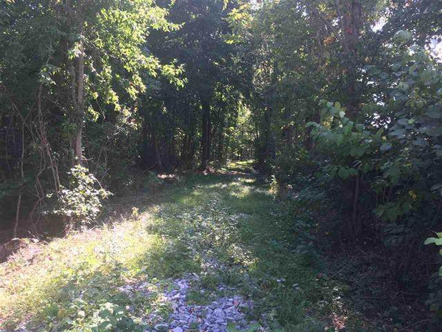 TBD Old B And O Rd, Raphine, VA 24472 (MLS #611474) :: Real Estate III