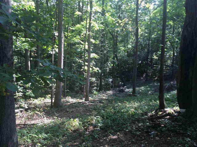 New Old B And O Rd, Raphine, VA 24472 (MLS #611476) :: Real Estate III