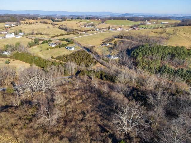 TBD Fort Defiance Rd, Fort Defiance, VA 24437 (MLS #612412) :: KK Homes