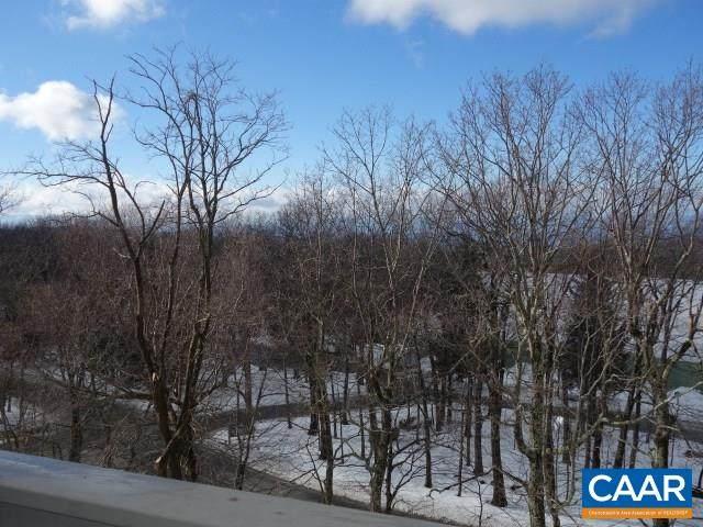 3221 North Ridge Condos, Wintergreen Resort, VA 22958 (MLS #613891) :: Jamie White Real Estate