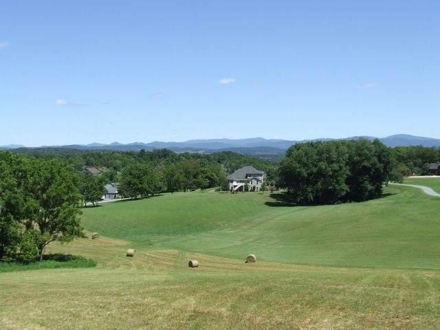 Lot 19 Stoneledge Dr #19, LEXINGTON, VA 24450 (MLS #614260) :: Real Estate III