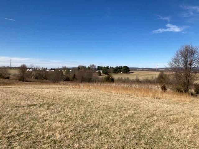 Old Valley Pike, New Market, VA 22844 (MLS #614830) :: Jamie White Real Estate