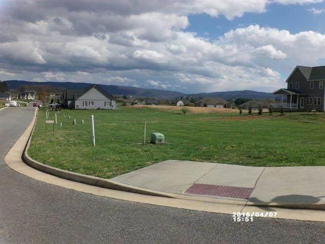 257 Jocelyn Ln 117 - 122, WAYNESBORO, VA 22980 (MLS #617178) :: Real Estate III