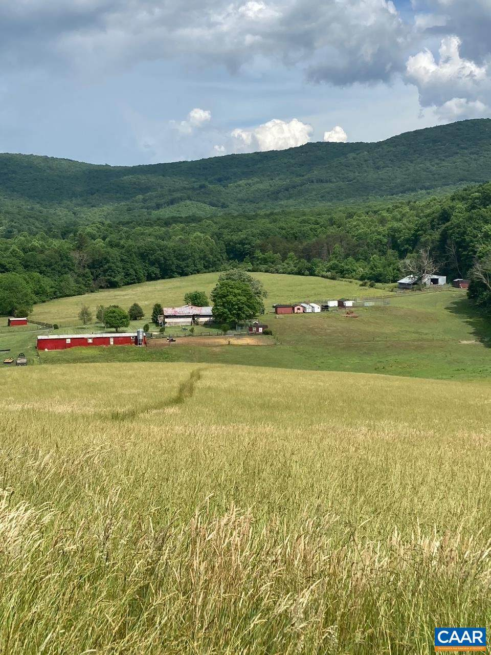 2490 Little Calf Pasture Hwy - Photo 1