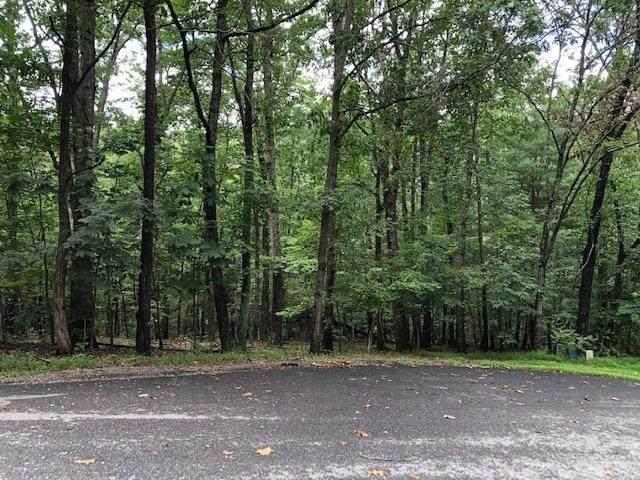 231 Spotswood Ln #195, Mcgaheysville, VA 22840 (MLS #621306) :: Jamie White Real Estate
