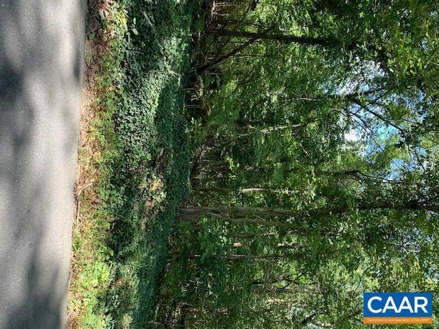 556 Black Cat Rd, KESWICK, VA 22947 (MLS #621731) :: Real Estate III