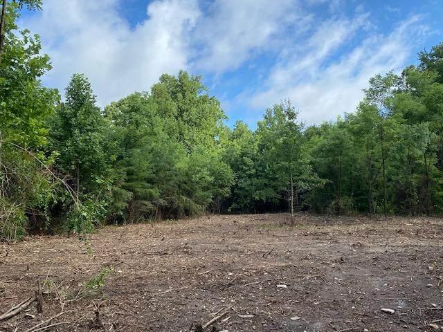 TBD Lake Dr, Crimora, VA 24431 (MLS #561243) :: Real Estate III