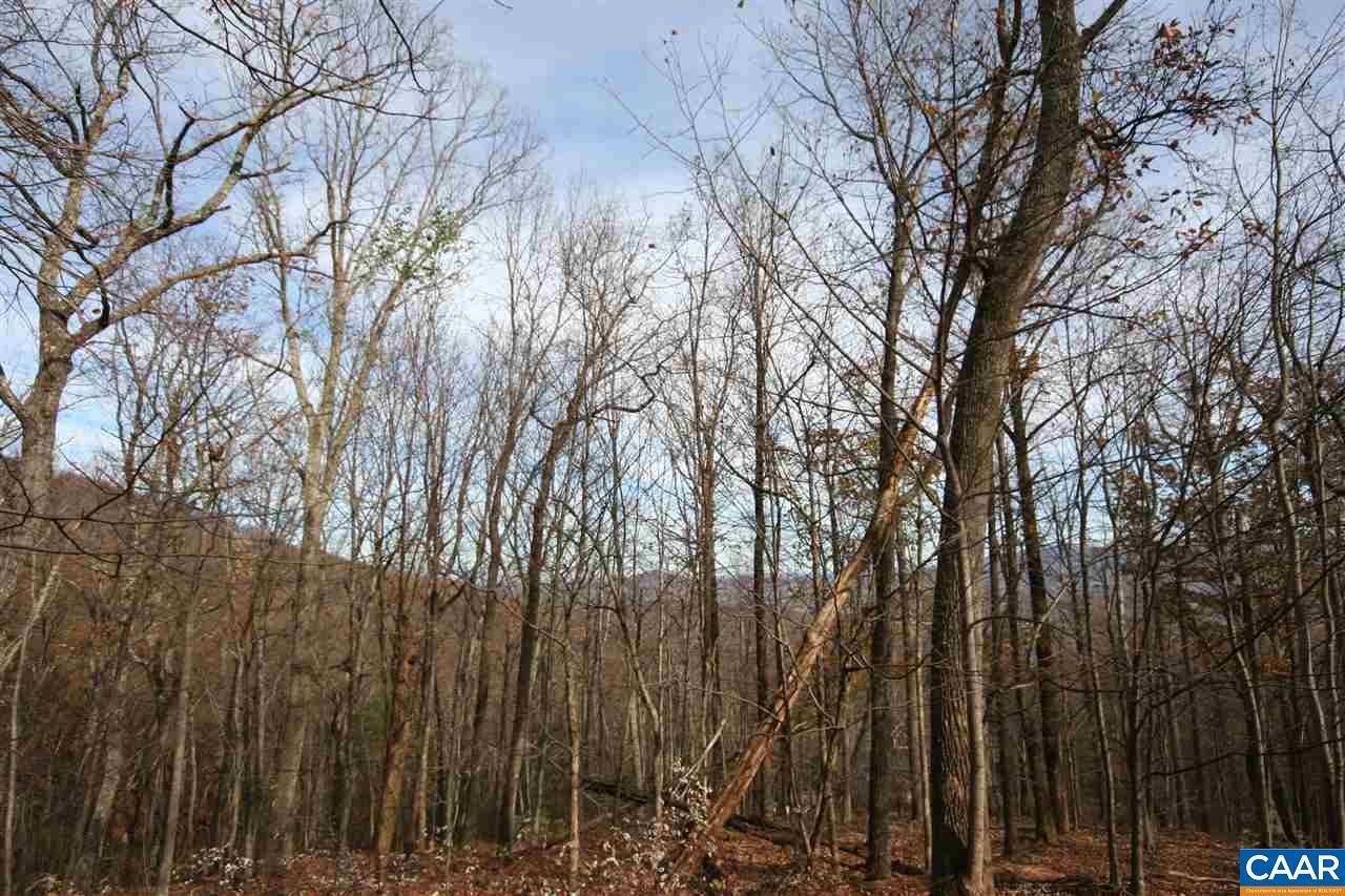 1450 Crawfords Climb - Photo 1
