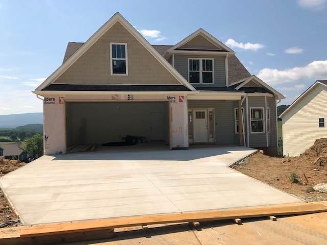 lot 64 Mcilwee Ln, STAUNTON, VA 24401 (MLS #597142) :: Jamie White Real Estate