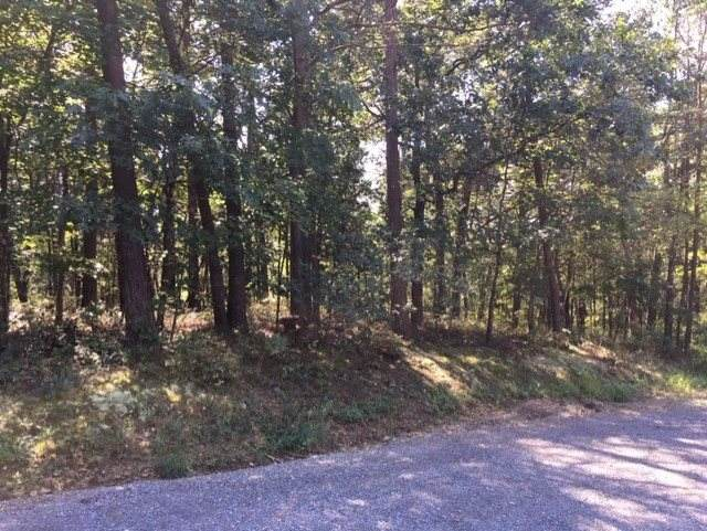 00 Hickory Ln, MOUNT JACKSON, VA 22842 (MLS #608143) :: Real Estate III
