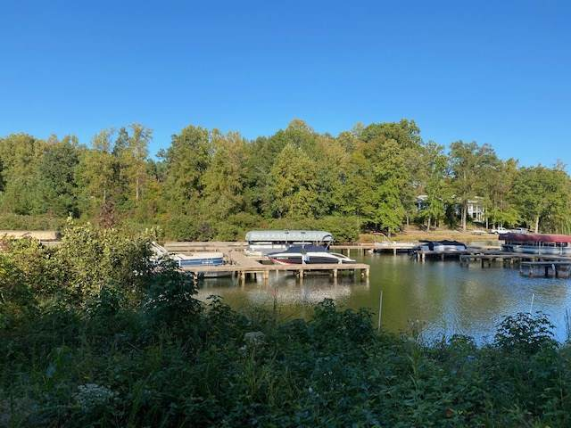 Lot 310 Lake Forest Dr, MINERAL, VA 23117 (MLS #609681) :: Jamie White Real Estate