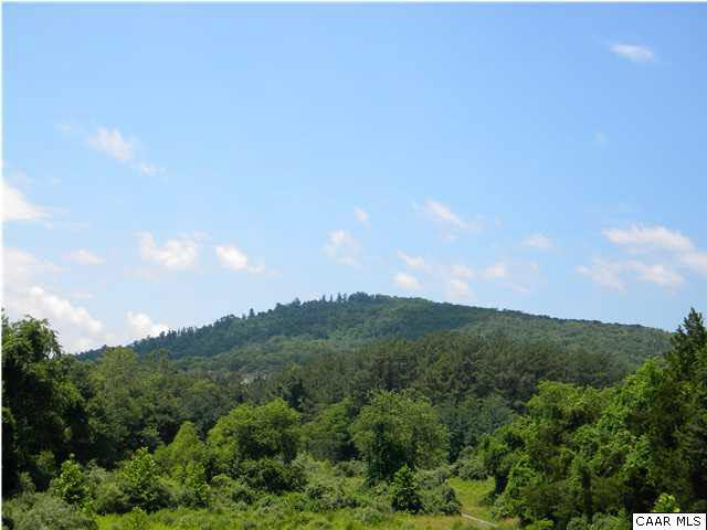 Ambrose Commons Dr Lot 12, CHARLOTTESVILLE, VA 22903 (MLS #503427) :: Jamie White Real Estate