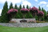 11511 Grey Oaks Estates Run - Photo 2