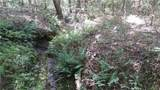 2.59 Acres Bent Creek Road - Photo 4