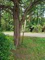 289 Walnut Hill Road - Photo 21