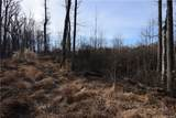 46.53 Acres Genito Road - Photo 11