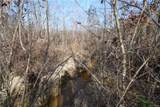 46.53 Acres Genito Road - Photo 16