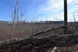 46.53 Acres Genito Road - Photo 26