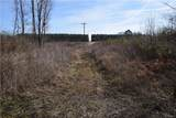 46.53 Acres Genito Road - Photo 27
