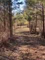 Lot 7 Dogwood Trail - Photo 4