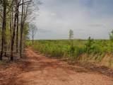 614 Plain Dealing Road - Photo 9