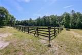 14356 Meadow Farm Road - Photo 42