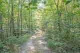 5801 Funny Tree Trail - Photo 13