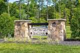 4509 Bacova Club Court - Photo 34
