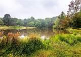 16060 Geese Lake Lane - Photo 24