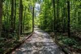 2459 Shady Oaks Trail - Photo 3