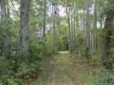 9167 A Guinea Road - Photo 1