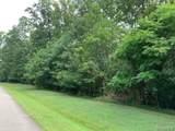 1650 Fallen Timber Trail - Photo 3