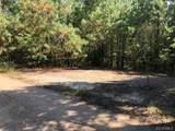 11500 Dalmation Drive - Photo 4