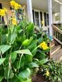 7459 Olde Grove Glen - Photo 33