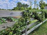 XXXX Little Meadow Lane - Photo 5