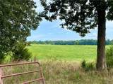 68 Acres - 1500 Capeway Road - Photo 3